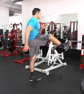 sagittal leg swing