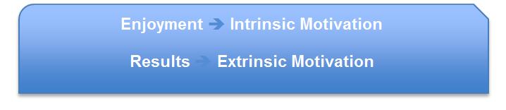 Enjoyment = Intrinsic Motivation, Results = Extrinsic Motivation