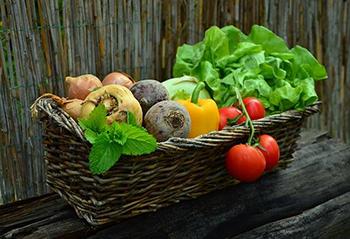 Navigating Dietary Preferences